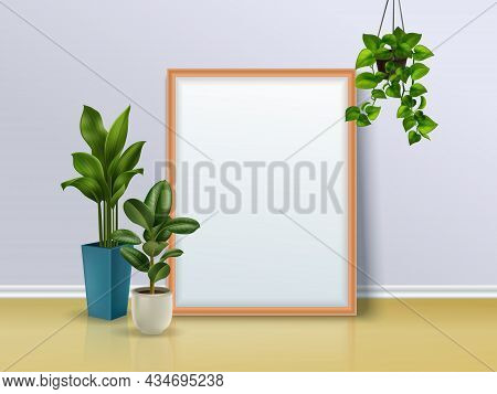Colored Composition Of A Mirror And Three House Plants One Of Which Is Suspended Realistic Vector Il