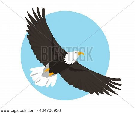 Bald Eagle Flying In Sky. Bird Icon Isolated On Background. North American Eagle For Nature, Bird Wa