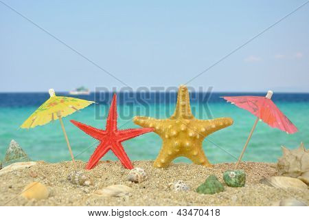 Two Star Fishes With Paper Umbrellas