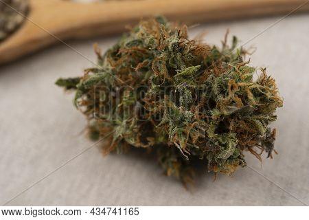 Cannabis Close Up Macro Marijuana Drying, Medical Marijuana Flower Close Up. Cannabis Bud Macro Phot