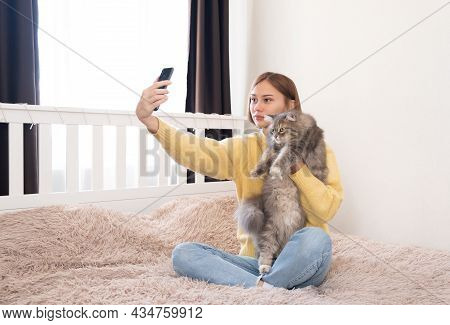 Young Woman Takes A Selfie With A Gray Cat In The Bedroom. A Girl In A Yellow Sweater Is Photographe