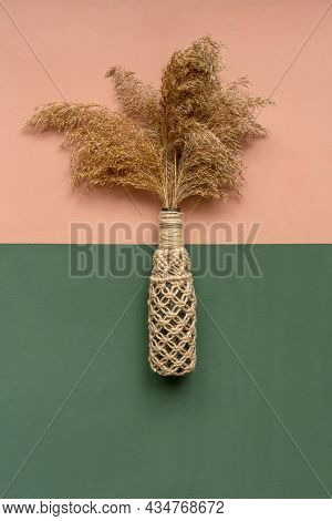 Pampas Grass In Vase On Dual Background.