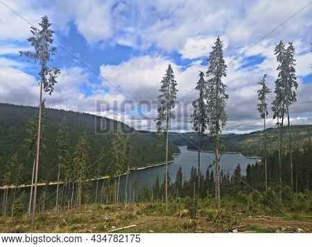 Summer Landscape In The Mountains With Lake - Belis-fantanele Lake, Apuseni