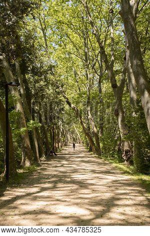 A Girl Walking Through A Path Among Trees In Santa Coloma De Farners In Catalonia