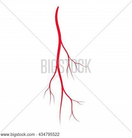 Human Red Vein. Vessel, Capillaries, Arteries, Eye Vein. Blood System. Concept Anatomy Element For M