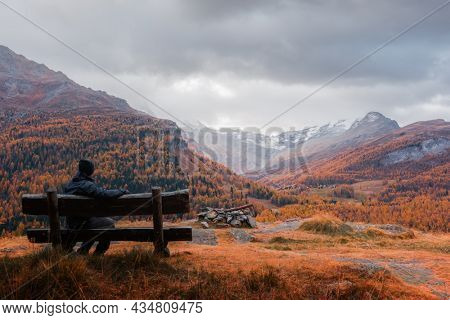 Tourist on wooden bench in Swiss Alps. Colorful forest with orange larch and snowy mountains on background. Switzerland, Maloja region, Upper Engadine. Landscape photography