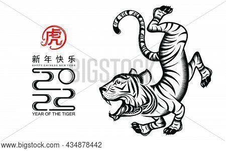 Tiger 2022 916