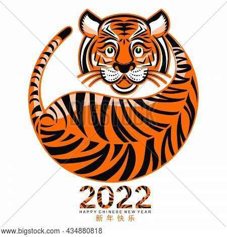Tiger 2022 897