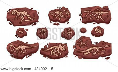 Dinosaur Fossil. Cartoon Paleontology Excavation With Prehistoric Jurassic Dino Skeletons Set. Isola