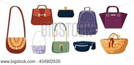 Fashion Purse. Elegant Glamour Women Clutch And Everyday Casual Bags. Isolated Trendy Handbags. Back