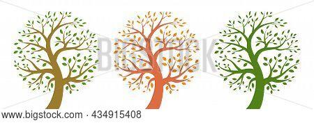 Tree Icon Set. Life Logo. Plant Insignia. Environment Emblem. Nature Symbol. Organic Icon. Vector Il