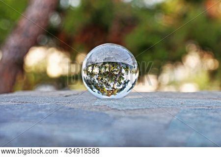 Greek Forest Through Lens Ball - Photography Ball - Lens Ball Landscape