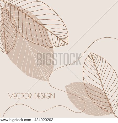 Abstract Background With Organic Flowing Shapes And Leaf Imprint. Modern Minimalist Design In Scandi