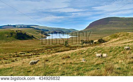 Llyn Craig-y-pistyll Reservoir Supplies Water To The Aberystwyth Area. Taken From Bwlchystyllen On T