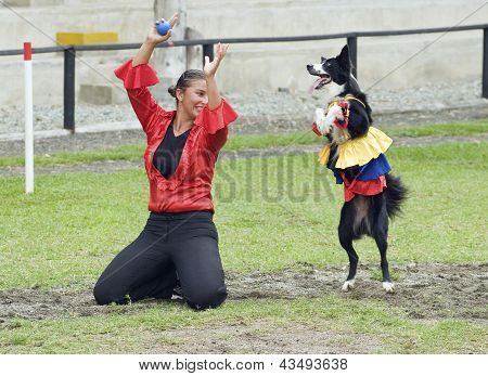 Colombian Dancing Dog