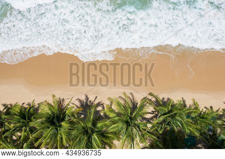 Aerial View Top Views Beautiful Tropical Beach With White Sand Coconut Palm Trees And Sea. Top View