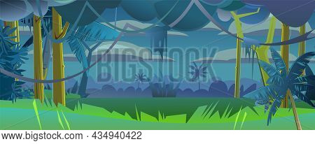 Rainforest Leaves. Dense Thickets. Night View From Dark Jungle Forest. Southern Rural Scenery. Illus