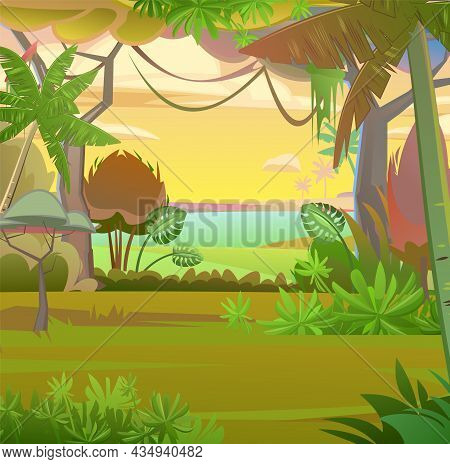 Rainforest Leaves. Morning Sunrise Dawn Or Evening Sunset. Dense Thickets. View From Jungle Forest.