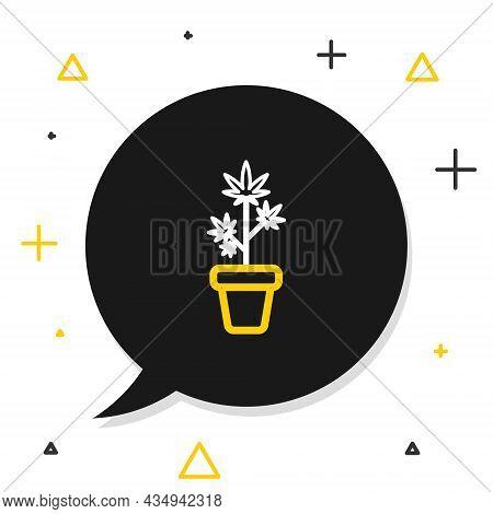 Line Medical Marijuana Or Cannabis Plant In Pot Icon Isolated On White Background. Marijuana Growing