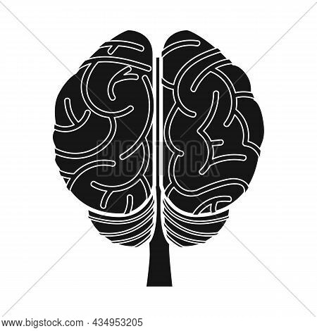Vector Design Of Cerebrum And Hemisphere Symbol. Graphic Of Cerebrum And Gyri Vector Icon For Stock.