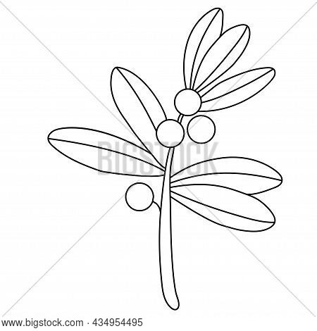 Branch Of Plant With Round Berries And Leaves. Vector Illustration. Outline. Linear Drawing For Desi