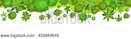 Edge Of Jungle Forest. Top View. Horizontal Seamless Composition. Overgrown Rainforest. Isolated On