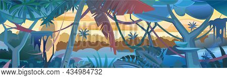 Rainforest Plants. Morning Sunrise Dawn Or Evening Sunset. Dense Thickets. View From The Forest. Sou
