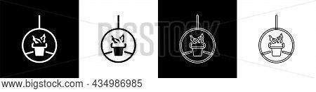 Set Plant In Hanging Pot Icon Isolated On Black And White Background. Decorative Macrame Handmade Ha