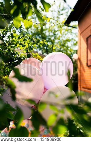 Balloons In The Garden At A Birthday Party In The Greenery