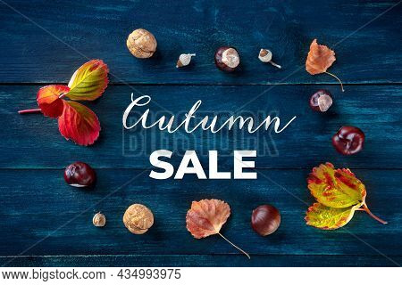 Autumn Sale Banner With Fall Leaves And Chestnuts, Overhead Flat Lay Shot On A Dark Blue Wooden Back