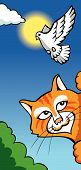 Cat hunting dove funny greeting card in cartoon style vector illustration poster