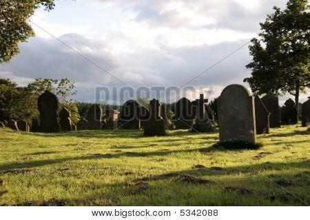 Evening Sun At The Graveyard