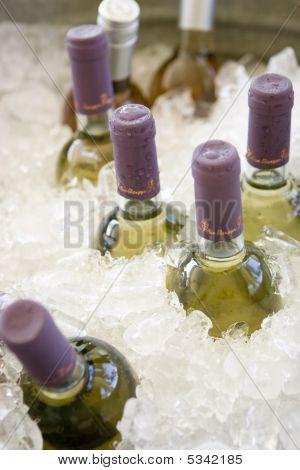 Wine Bottles On Ice