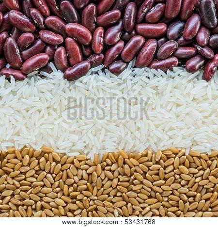 Food Grain Background