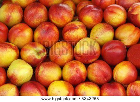 Full Shot of Whole Nectarines