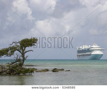 Cruise Ship In Carribean With Tree
