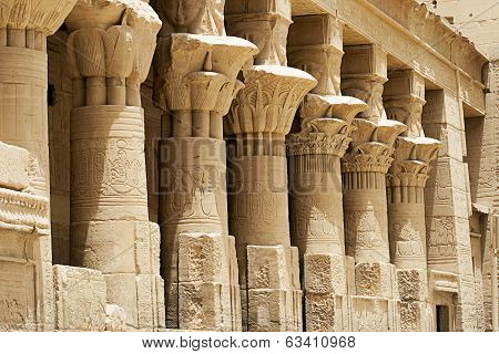 Columns At Philae Temple, Aswan, Egypt