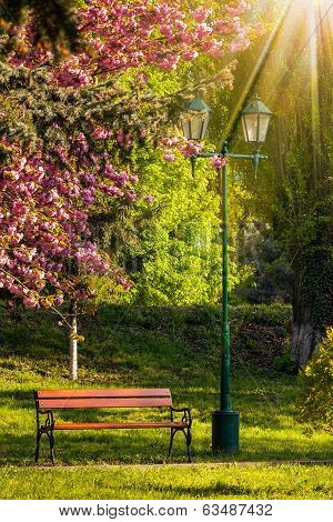 Old City Park With Lantern In Sun Light