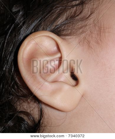childs ear