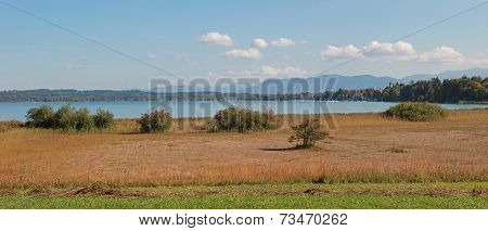 Idyllic Autumnal Lake Shore Starnberg Lake With Moor
