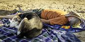 A woman and her dog napping on the shore of Lake Michigan poster