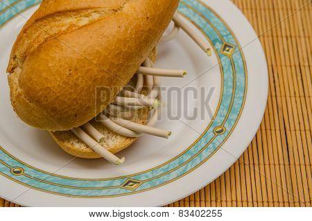 Sandwich Of Fiber Optics