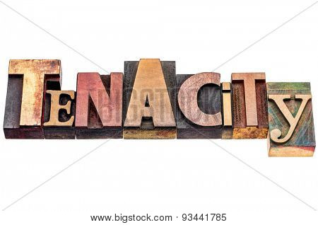 tenacity word abstract - isolated text in mixed vintage letterpress wood type printing blocks