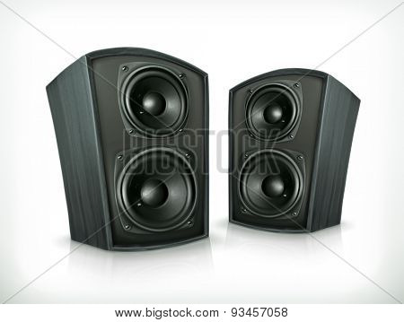 Acoustic speakers in plane wooden body, vector icon