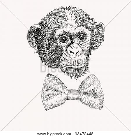 Sketch Monkey Face With Bow Tie. Hand Drawn Doodle Vector Illustration.