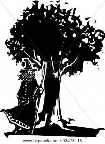 Wizard And Tree