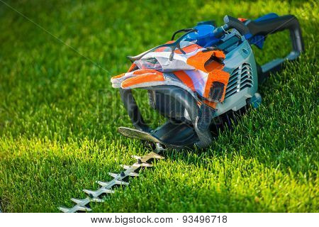 Hedge Trimming Safety