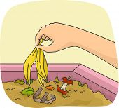 Illustration of a Person Adding a Banana Peel in a Compost Pit poster