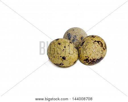 Quail eggs isolated on white background. Domesticated quails are important agriculture poultry