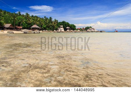 Palm tree over lagoon with boats and white sand beach at sunshine day. Koh Tao island Thailand